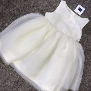 Janie and jack special ocasión dress NWT 2t